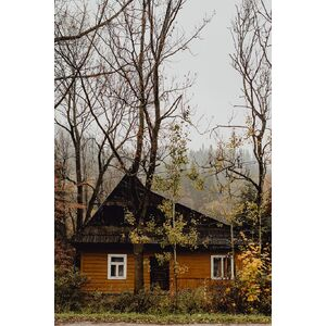 wooden-house-old-house-cabin-shed